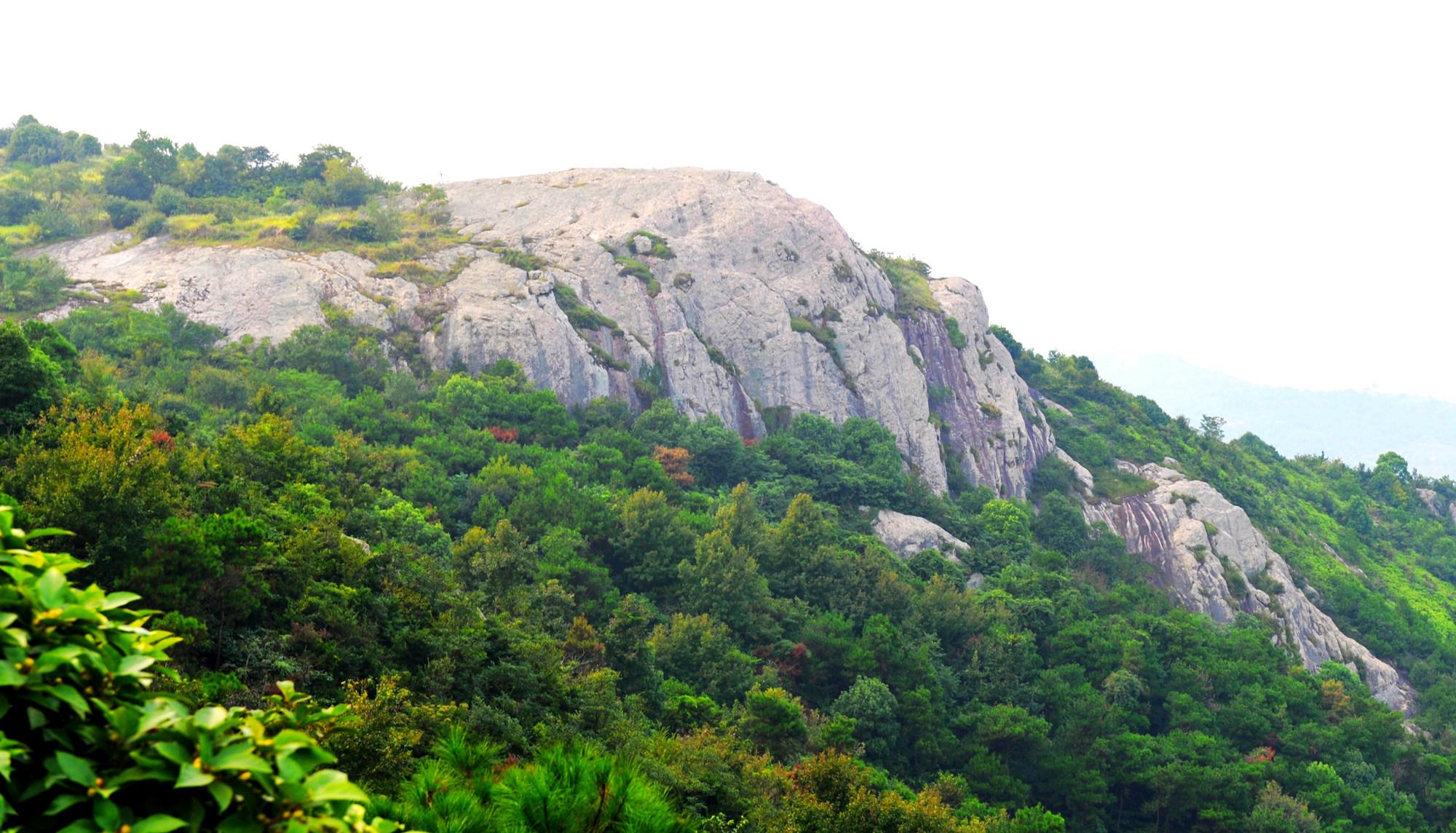 百丈岩顶峰高309米,山顶有古烽火台、古晒场,建寺庙,山上有骑岩鸟、大虫头、缠龙头.jpg